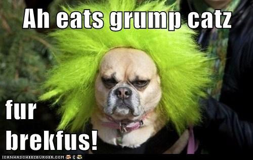 Ah eats grump catz   fur                                 brekfus!