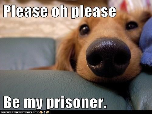 Please oh please  Be my prisoner.