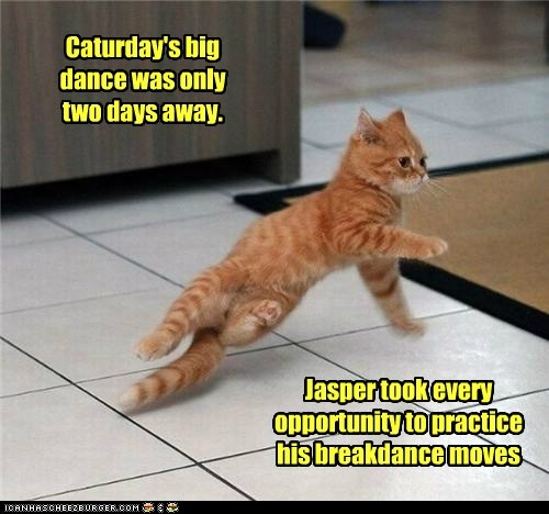 The Caturday Dance Trophy is as Good as Mine!