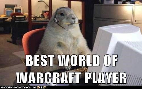 BEST WORLD OF WARCRAFT PLAYER