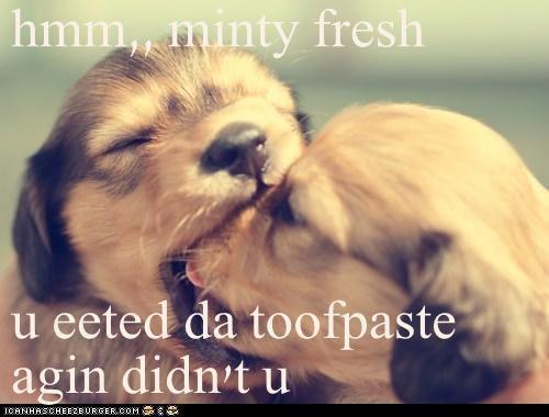 hmm,, minty fresh  u eeted da toofpaste agin didn't u