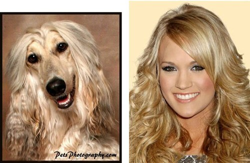 Totally looks like Carrie Underwood