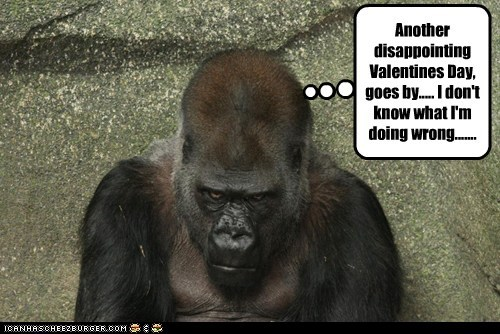Another disappointing Valentines Day, goes by..... I don't know what I'm doing wrong.......