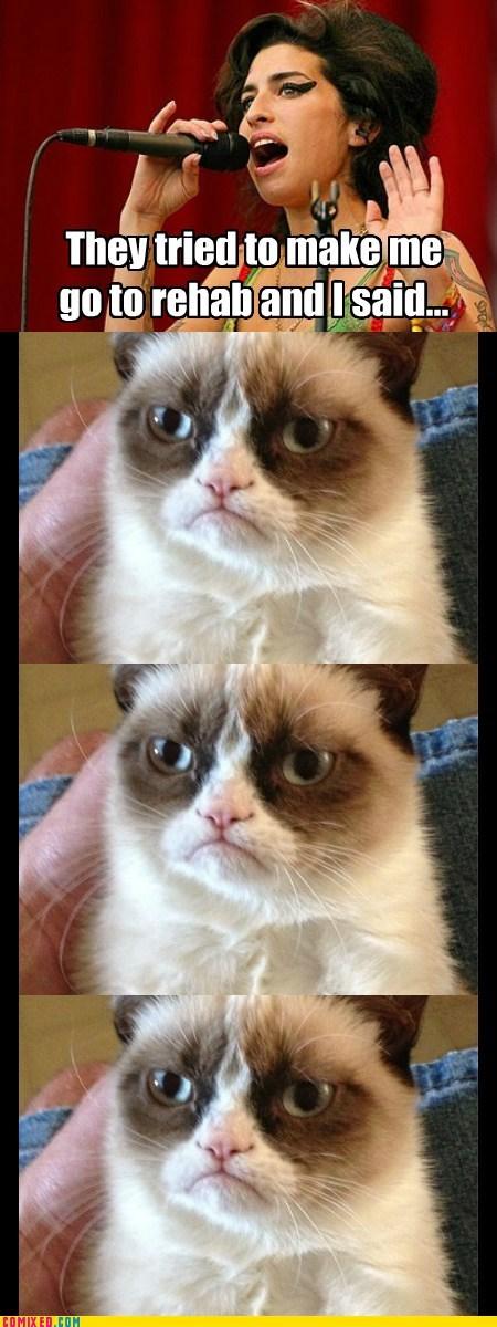 rehab,amy winehouse,Grumpy Cat