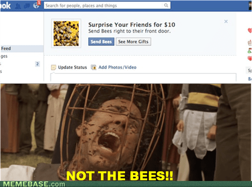 OH GOOD GUYS NOT THE BEES!