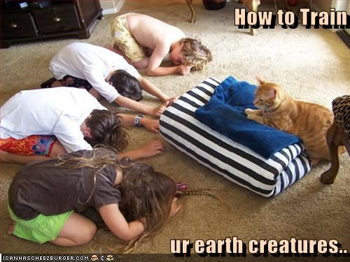 How to Train  ur earth creatures..