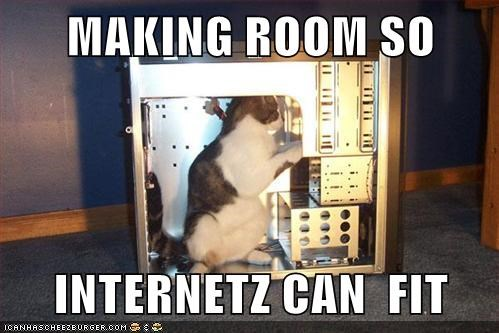 Techie Cat is Techie