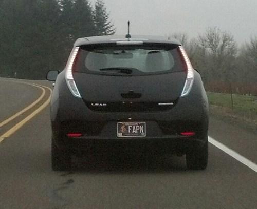 fap,cars,license plate