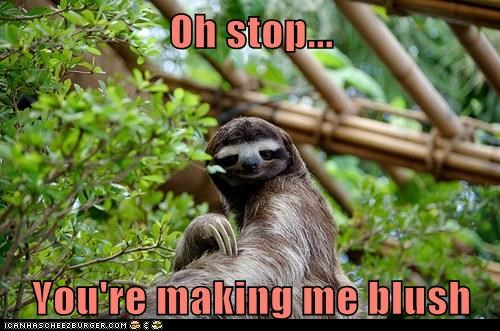 modesty,oh stop it you,sloths,blush