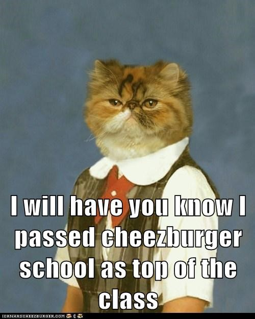 I will have you know I passed cheezburger school as top of the class