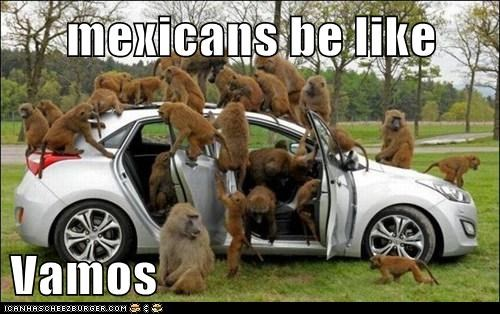 mexicans be like  Vamos