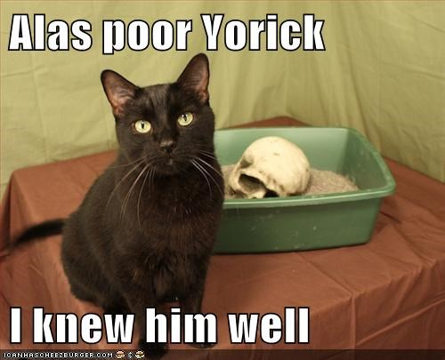 Alas poor Yorick  I knew him well