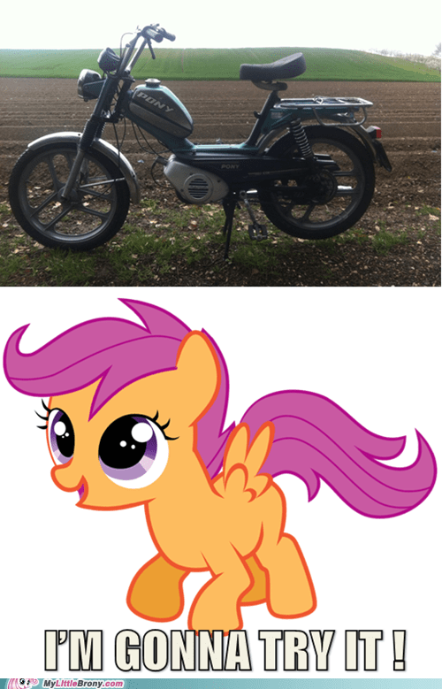 Scootaloo's new moped