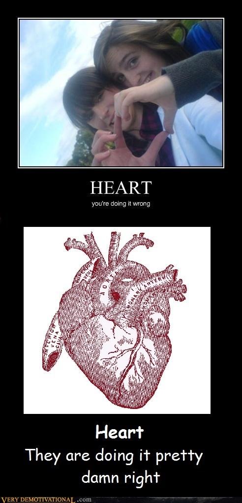 anatomy,heart,nazi
