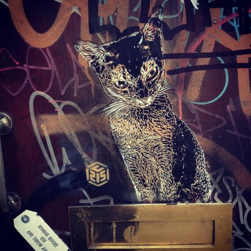 Kitty Street Art WIN