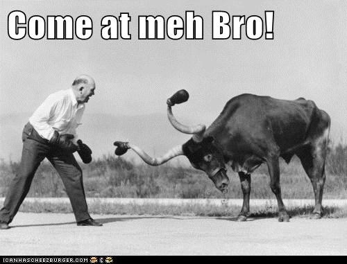 Come at meh Bro!