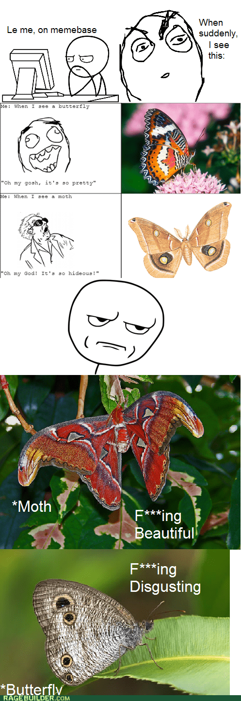 Don't Judge an Insect by Its DNA!