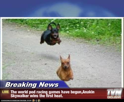 Breaking News - The world pod racing games have begun,Anakin Skywalker wins the first heat.