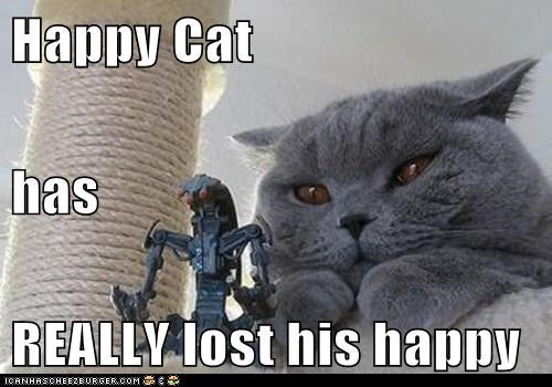 Happy Cat has REALLY lost his happy