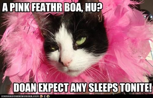A PINK FEATHR BOA, HU?