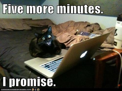 Speak With Your Kitty About Internet Addiction...