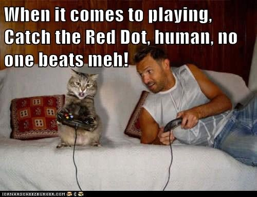 games,red dot,human,Cats