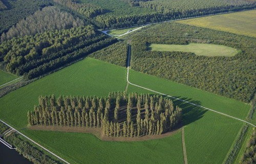This Isn't Shopped of the Day: Cut & Paste Forest in the Netherlands