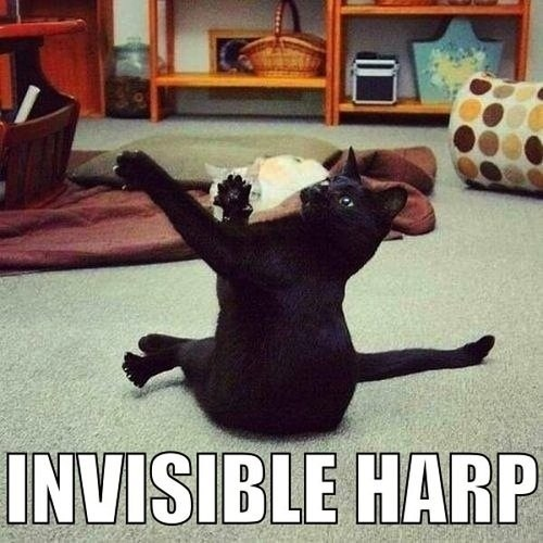 """I Believe That's Called """"Air Harp"""""""