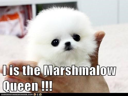 I is the Marshmalow Queen !!!