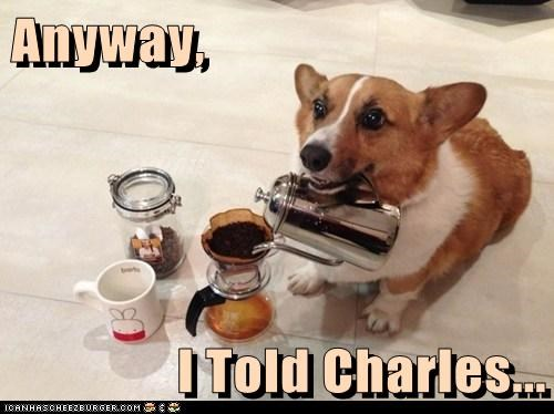 Anyway,  I Told Charles...