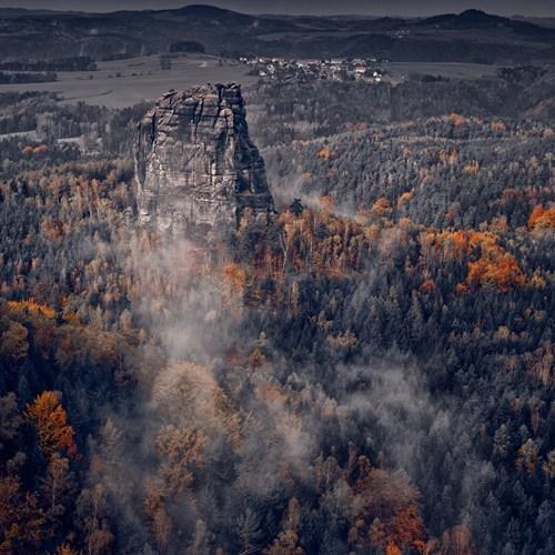 Forest,landscape,mountains,fog