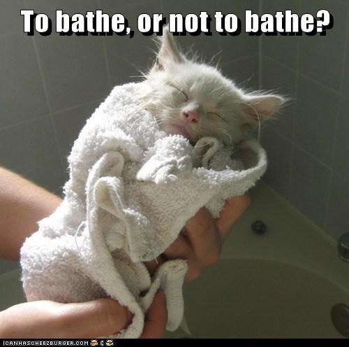 To bathe, or not to bathe?