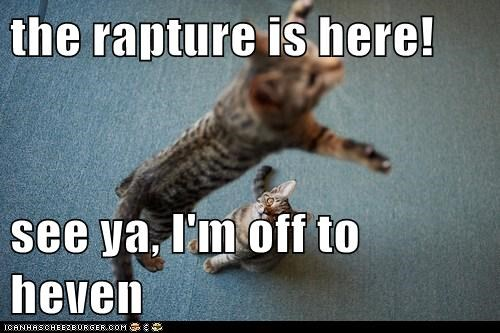 the rapture is here!  see ya, I'm off to heven
