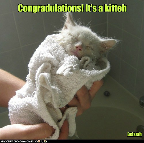 Congradulations! It's a kitteh
