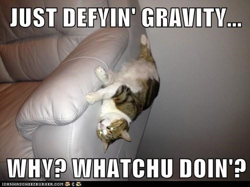 JUST DEFYIN' GRAVITY...  WHY? WHATCHU DOIN'?