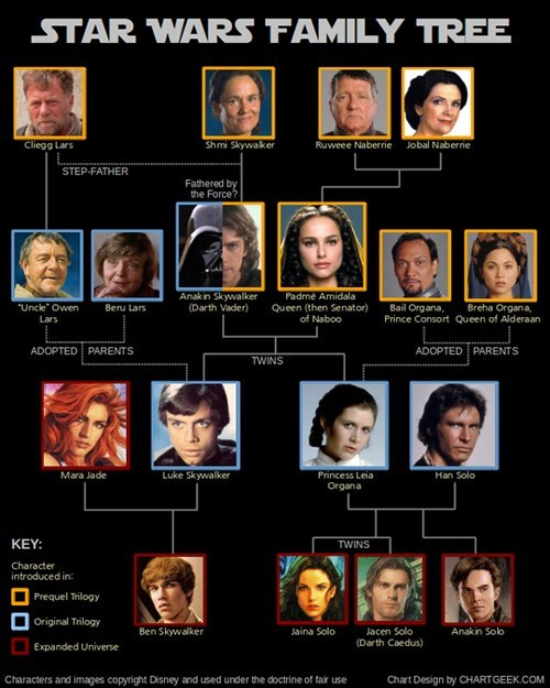 star wars,charts,luke skywalker,infographics,Family Tree,Han Solo,Princess Leia,darth vader