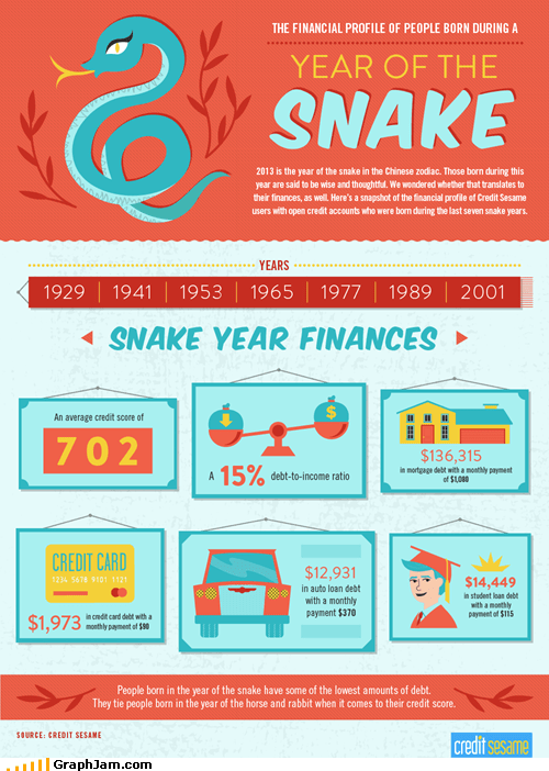 Year of the Snake Finances