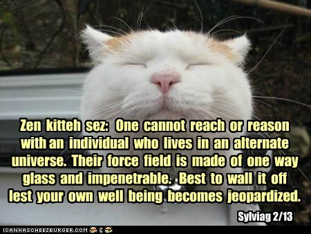 Zen  kitteh  sez:   One  cannot  reach  or  reason  with an  individual  who  lives  in  an  alternate  universe.  Their  force  field  is  made  of  one  way  glass  and  impenetrable.   Best  to  wall  it  off  lest  your  own  well  being  becomes  jeo
