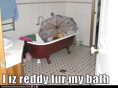 I iz reddy fur my bath