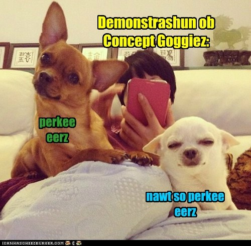 Demonstrashun ob Concept Goggiez: