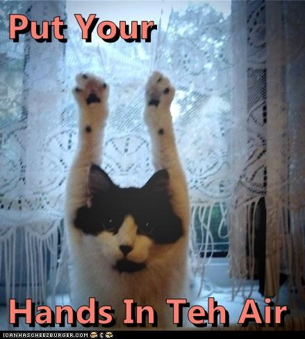 Put Your  Hands In Teh Air