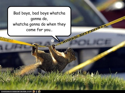 Bad boys, bad boys whatcha gonna do, whatcha gonna do when they come for you..