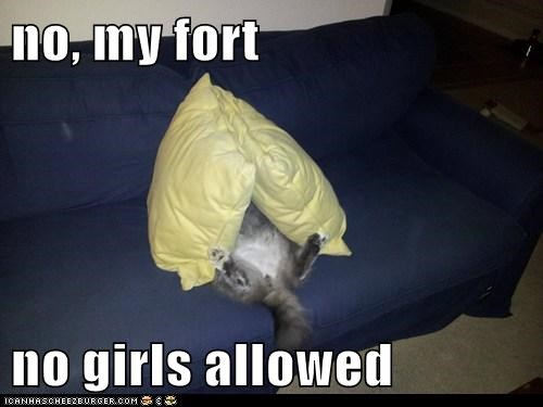 girls,fort,Cats