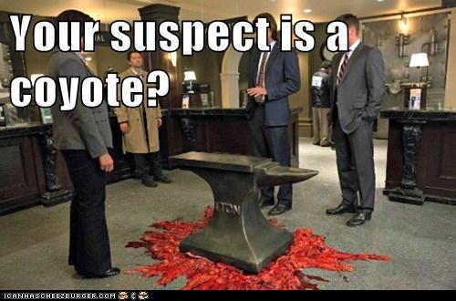 suspect,looney tunes,jensen ackles,anvil,Supernatural,dean winchester,misha collins,sam winchester,Jared Padalecki,castiel
