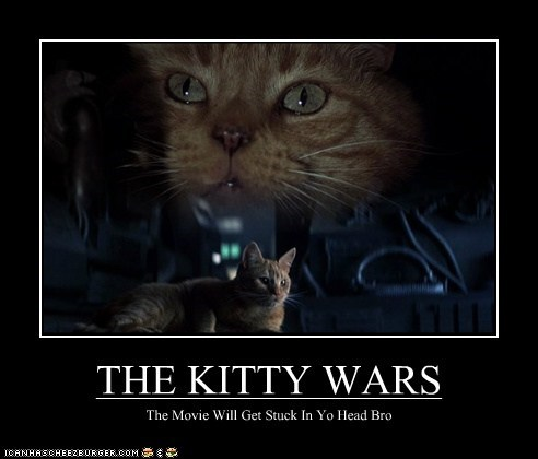 THE KITTY WARS