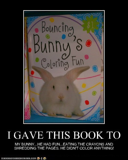 Fun for Bunnies...Right!
