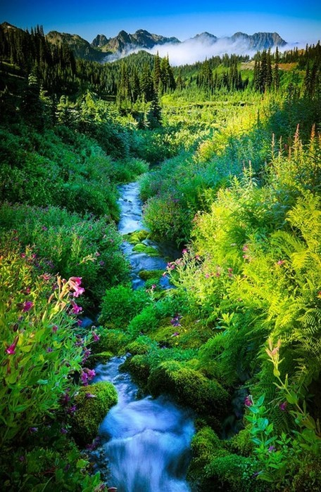 river,landscape,mountains,pretty colors