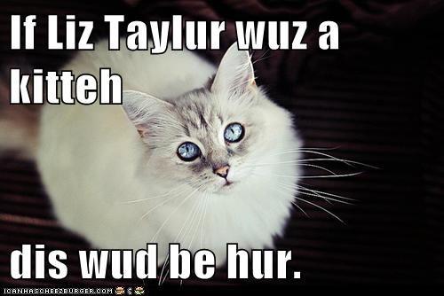 If Liz Taylur wuz a kitteh  dis wud be hur.