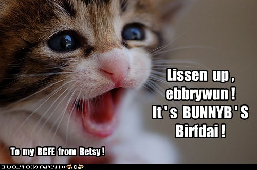 It's Bunnybrinkles' Birfdai!