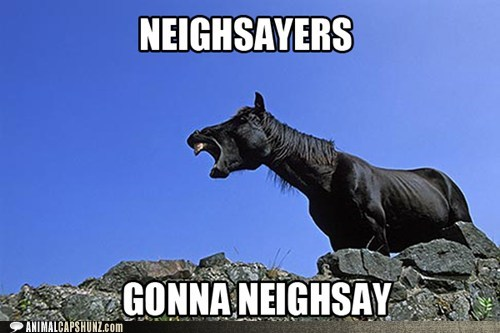 haters gonna hate,pun,neigh,horses,naysayers